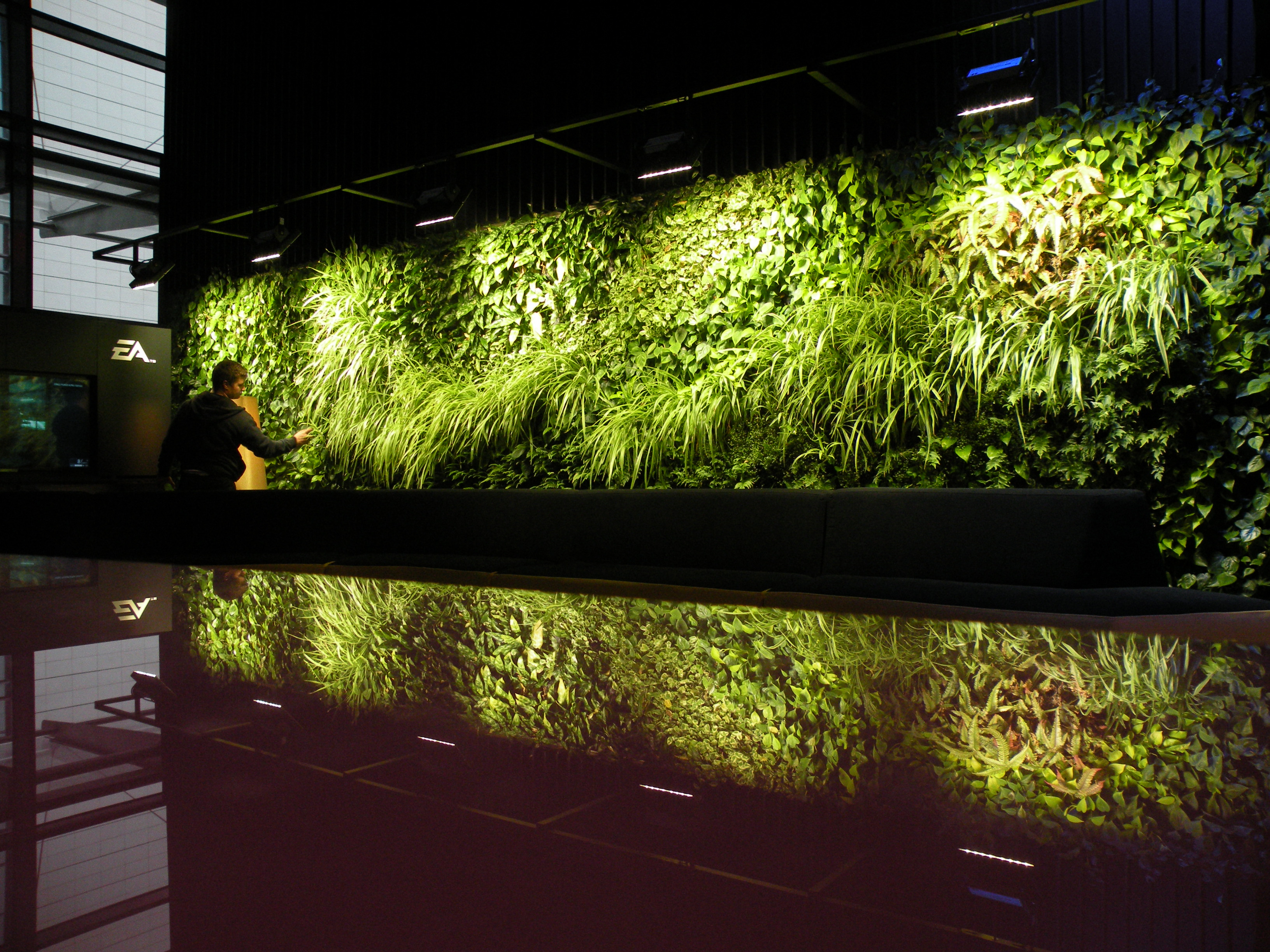 Living walls atmosspheric living wall mozeypictures Images